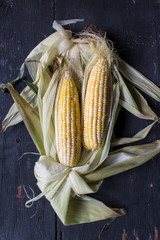 Yellow and white corn on cob on a bed of husks