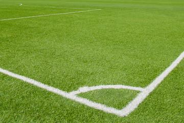 White line on soccer field grass