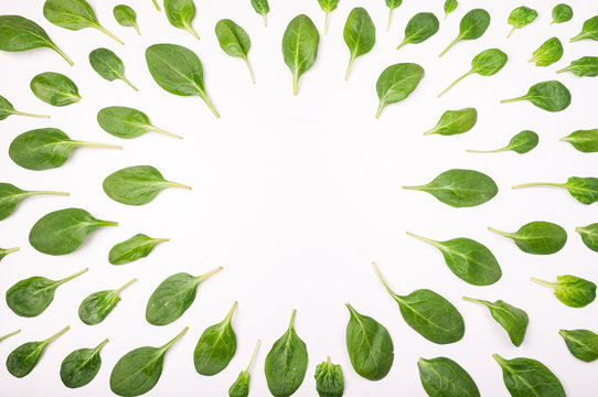 Frame made of spinach leaves on white background. Spinach leaf isolated background. Creative food concept. Ingredient for salad. Flat lay, top view