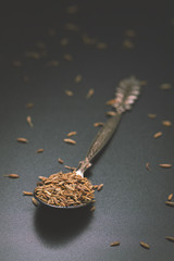 Dried Cumin Spice In An Old Iron Spoon On A Black Background. Vintage. Rustic. Dark Style. Close-Up. Macro. Shallow Depth Of Field. Free Space For Text.