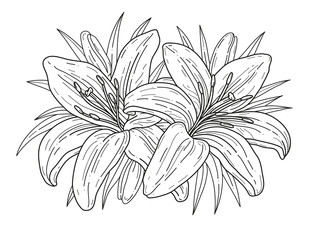 Lilies flowers monochrome vector illustration. Beautiful tiger lilly isolated on white background. Element for design of greeting cards and invitations
