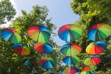 Multicolored umbrellas under the green crown of trees