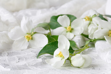 Spoed Fotobehang Bloemen Wedding concept with apple-tree flowers with two rings