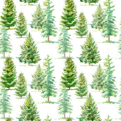 Floral seamless pattern of a spruce tree.Watercolor hand drawn illustration.White background.