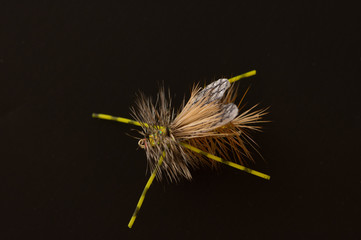 Fly Fishing Fly with tan and brown bristles and antennae against a black background.  Photographed in natural light close up.