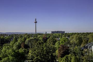 Blick über einen Park in Frankfurt am Main