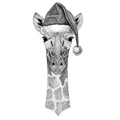 Camelopard, giraffe wearing christmas hat New year eve Merry christmas and happy new year Zoo life Holidays celebration Hand drawn image