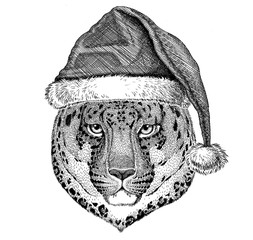 Wild cat Leopard Cat-o'-mountain Panther wearing christmas hat New year eve Merry christmas and happy new year Zoo life Holidays celebration Santa Claus hat