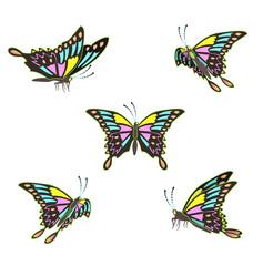 Beautiful butterflies set