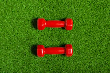 red dumbbell on green grass