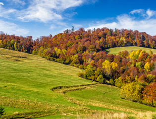 mountain rural area in autumn
