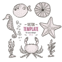 Hand drawn sea life illustration. Sketch template
