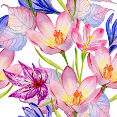 Wildflower crocuses  flower pattern in a watercolor style isolated.