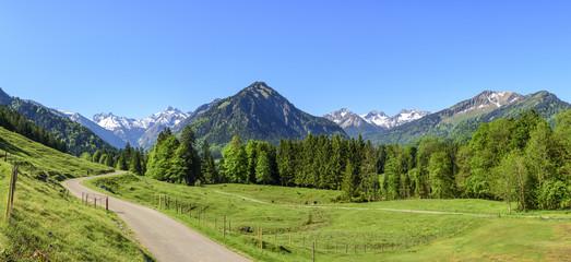 Blick in die südlichen Allgäuer Alpen bei Oberstdorf