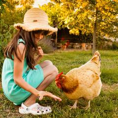 fillette donnant à manger à une poule