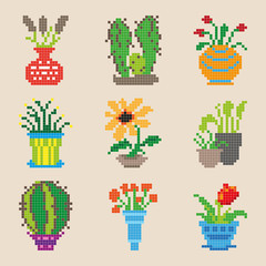 Set of different pixel flowers isolated. Vector illustration