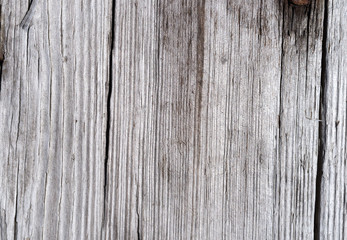 Cracked and worn board graying from weather.