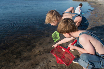Boys with nets looking for hermit crabs on the bay