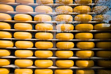 Cheese farm