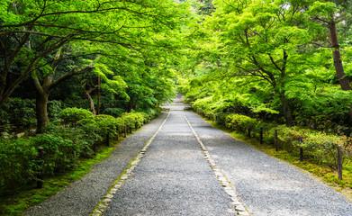 京都 嵯峨野 二尊院
