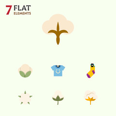 Flat Cotton Set Of Flower, Bud, Fiber And Other Vector Objects. Also Includes Flower, Fluffy, Clothes Elements.