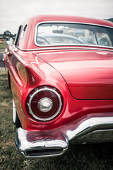 red thunderbird