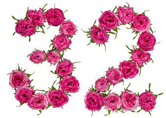 Arabic numeral 32, thirty two, from red flowers of rose, isolated on white background