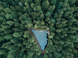 Drone flight over a hidden lake in the german forests