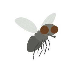 Vector illustration of cartoon fly