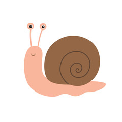 Cute snail cartoon
