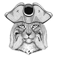 Wild cat Lynx Bobcat Trot wearing pirate hat Cocked hat, tricorn Sailor, seaman, mariner, or seafarer