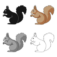 Squirrel.Animals single icon in cartoon style vector symbol stock illustration web.