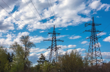 High-voltage lines against the blue sky,  pine forest. electricity