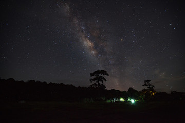 Milky Way Galaxy and Silhouette of Tree with cloud.Long exposure photograph.With grain