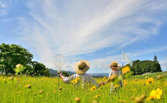 初夏の草原・花の広場で遊ぶ