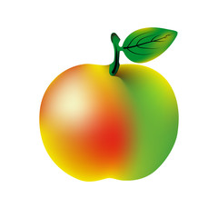 Vector ripe apple with green leaf isolated