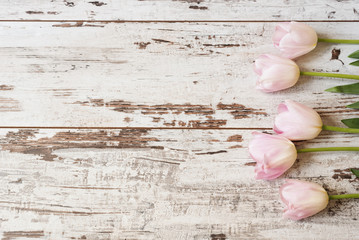 Stunning pink tulips on white light rustic wooden background. Copy space, floral frame. Vintage, haze looking. Wedding, gift card, valentine's day or mothers day background
