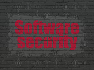 Privacy concept: Software Security on wall background