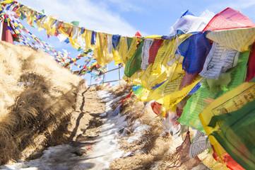 Wallpaper Macro tibetan prayer flags yellow blue red white mountain temple  religion path
