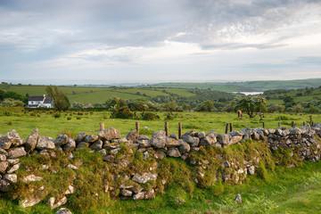 Wall Mural - Bodmin Moor Farm