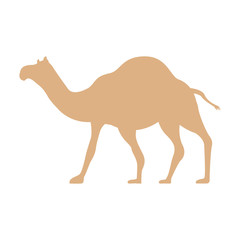 camel manger character icon animal happy postcard