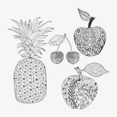 Hand drawn doodle set of fruits for coloring book.