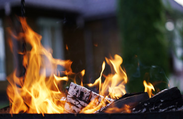 The fire in the grill.