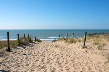 Path in the dunes with sea view