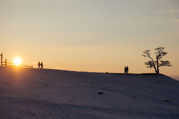 silhouette couple walking under the sunset in a winter and snowy field. One tree on the snow covered hill under the sunset and vanilla, orange clear sky. a couple standing beside a tree on the hill.