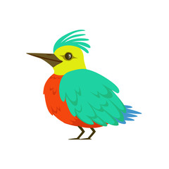 Small bird with turquoise wings, long nose and a tuft colorful vector Illustration