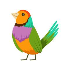 Colorful tropical bird vector Illustration