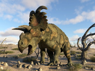 Albertaceratops dinosaur in the desert - 3D render