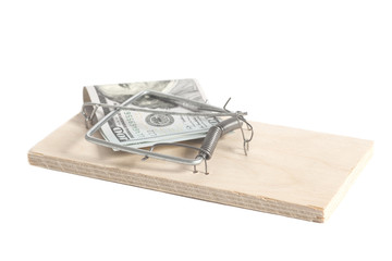 Hundred dollars in a mousetrap isolated on white background