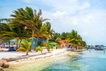 Caye Caulker Colors Wall mural